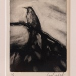 Lorelei Medcalf Grey Bird
